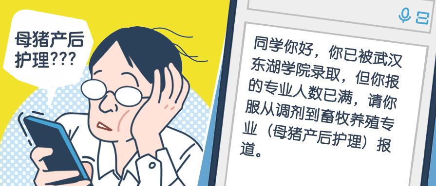 武汉东湖学院怎样调剂专业